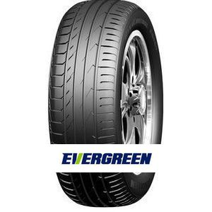 Rengas Evergreen ES880