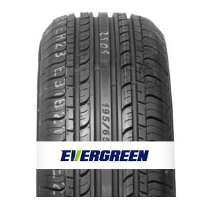 Rengas Evergreen EH23